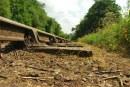 אדני רכבת – קשת רחבה של שימושים לחצר ולבית